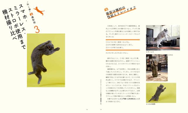 スマホ、ミラーレス、ストロボによる猫の撮り比べ by ねこ拳撮影術