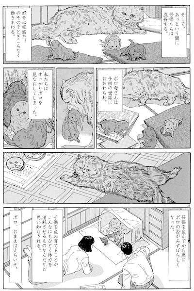 「犬を飼う そして…猫を飼う」の中身イメージ2