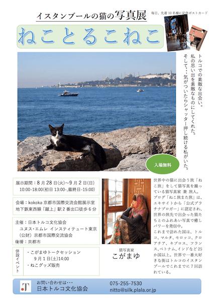 イスタンブールの猫の写真展 ねことるこねこ in kokoka京都市国際交流会館展示室