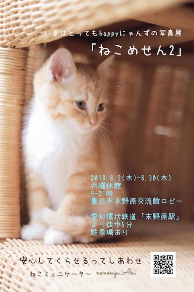 ねこミュニケーター「nanonya.Aki」さんによる写真展「ねこめせん2」
