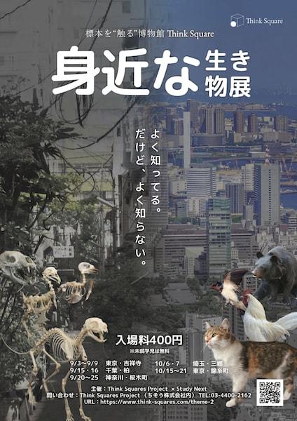 標本に触れる博物館、Think Squareの企画展「身近な生き物展」のポスター