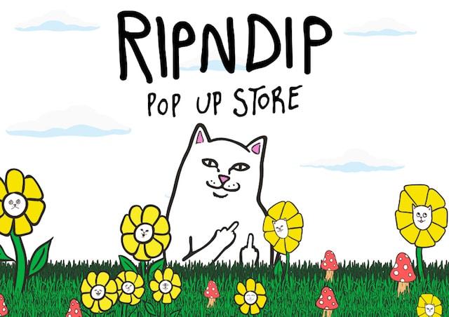 スケートブランド「RIPNDIP(リップンディップ)のイメージポスター