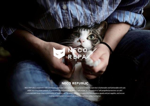 アパレル雑貨ブランド「NECOREPA(ネコリパ)