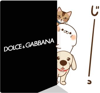 ドルチェ&ガッバーナの壁から覗く猫・犬・アザラシのイラスト by ドルチェ&ガッバーナのLINEスタンプ