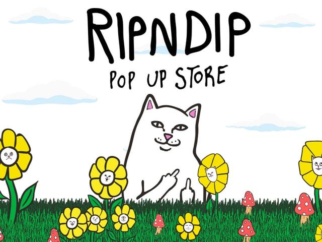 ジャーナルスタンダード提供、RIPNDIPの猫アイテム期間限定ショップが登場
