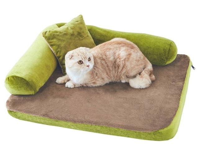 愛猫が喜ぶプレミアム猫グッズを「ねこのきもち」が期間限定で販売中
