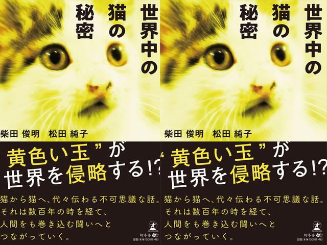 猫が地球を救う!?現役獣医師による本格SF小説「世界中の猫の秘密」