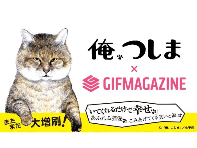 人気の猫マンガ「俺、つしま」をGIFアニメで楽しめる!GIFMAGAZINEに公式チャンネルを開設