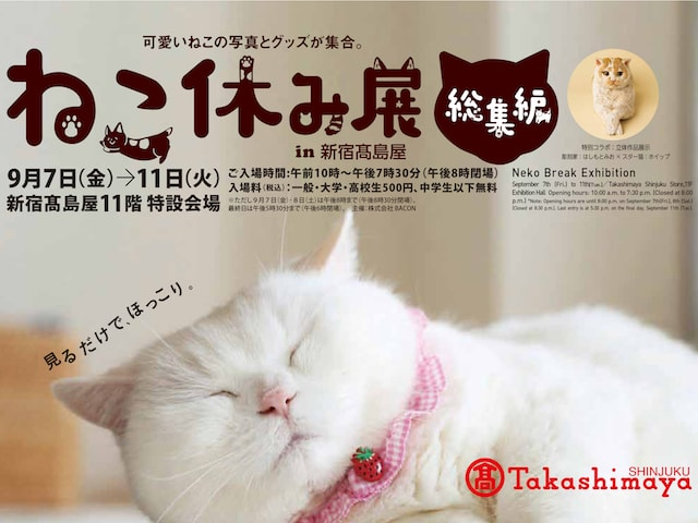 来場者数が50万人を突破!人気の「ねこ休み展」が2年ぶりに総集編を新宿高島屋で開催