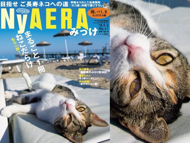 雑誌AERAの猫バージョン第3弾「NyAERA(ニャエラ)みっけ」が8/27に発売