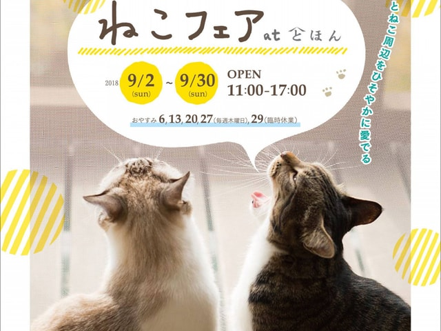 奈良県の大和郡山市で「ねこフェア」と「ねこまつり」が9月に開催