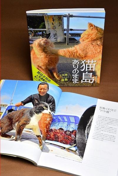 写真集「猫島ありのまま 上天草・湯島」の中身イメージ