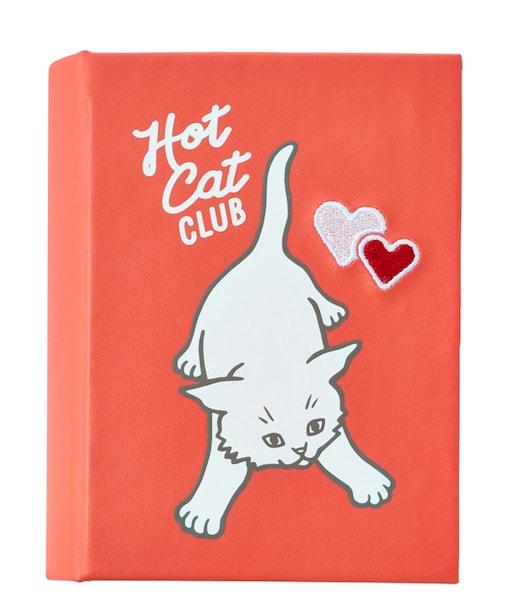 猫デザインのアクセサリーボックス in private