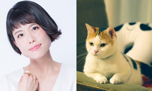 声優の沢城みゆきと、猫のモモ by 映画旅猫リポート