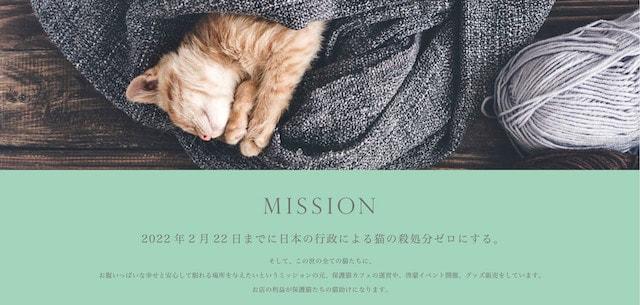 国内の猫の殺処分ゼロを目指して保護猫カフェを運営しているネコリパブリック