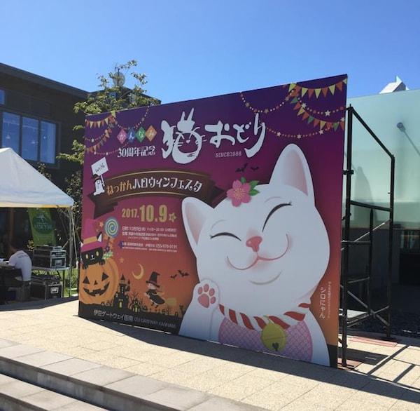 2017年に開催された第30回「かんなみ猫おどり」の様子