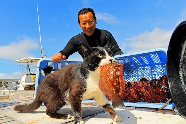 魚を加えた猫に微笑む漁師さん by 熊本県の猫島・湯島