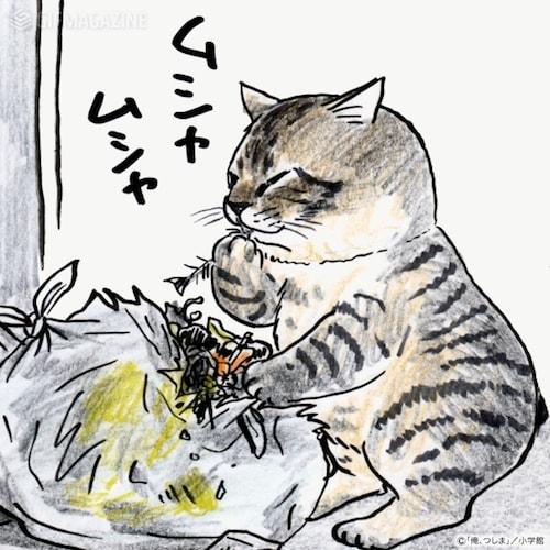 ゴミを漁るキジトラ猫 by 俺、つしま