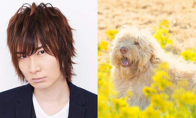 声優の前野智昭と、犬の虎丸 by 映画旅猫リポート