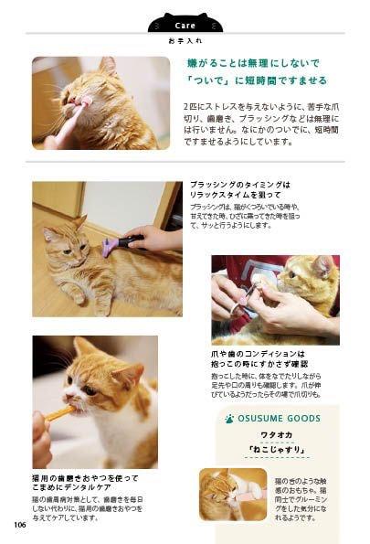 インスタグラマーによる猫のお手入れ方法