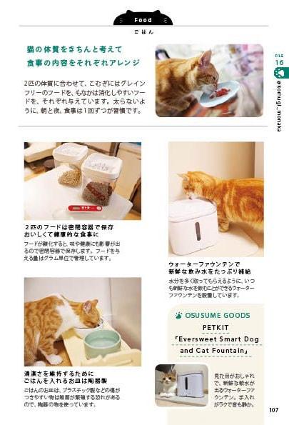 インスタグラマーが猫のご飯やお水のあげ方を解説