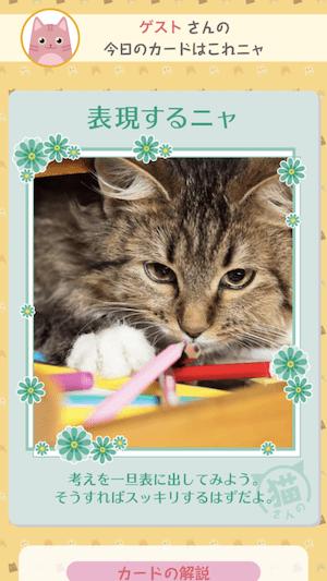 猫のアドバイスカードイメージ by 猫さんの言うことにゃ