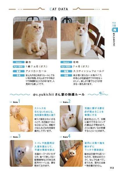 インスタグラマーの愛猫のプロフィール&生活ルールを公開