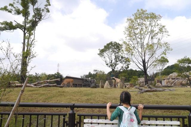 ズーラシアの園内イメージ