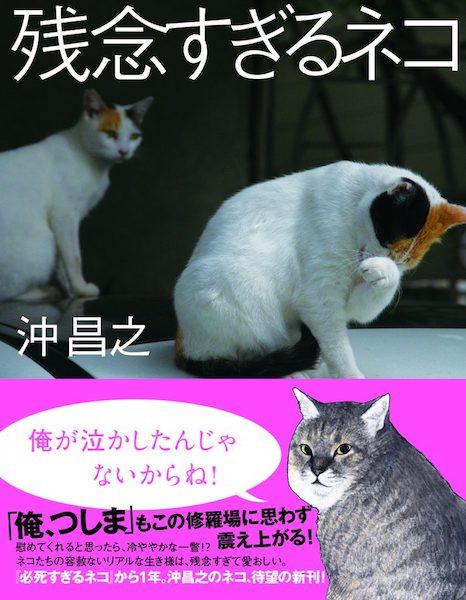 猫写真家・沖昌之さんの写真集「残念すぎるネコ」表紙イメージ