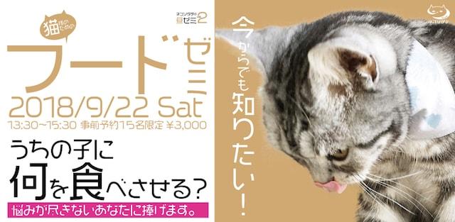 今からでも知りたい!猫様のためのフードゼミ by ネコソダテ