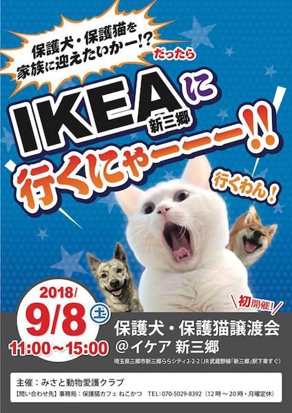 IKEA(イケア)新三郷店で行われる保護猫&保護犬譲渡会のポスター