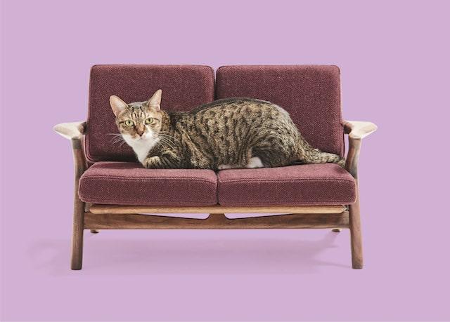 北欧家具風の猫用ソファ by ネコ家具