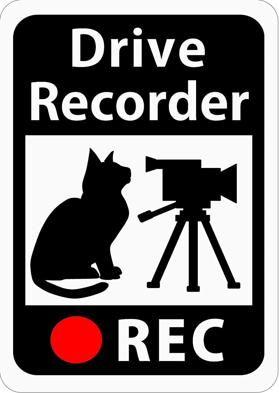 猫のイラストであおり運転を抑止する車用ステッカー「猫とビデオカメラ」