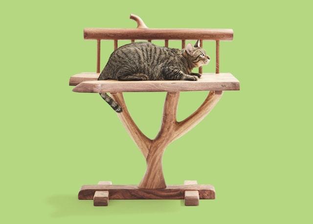ほぞ組みで組み立てた猫用の椅子 by ネコ家具
