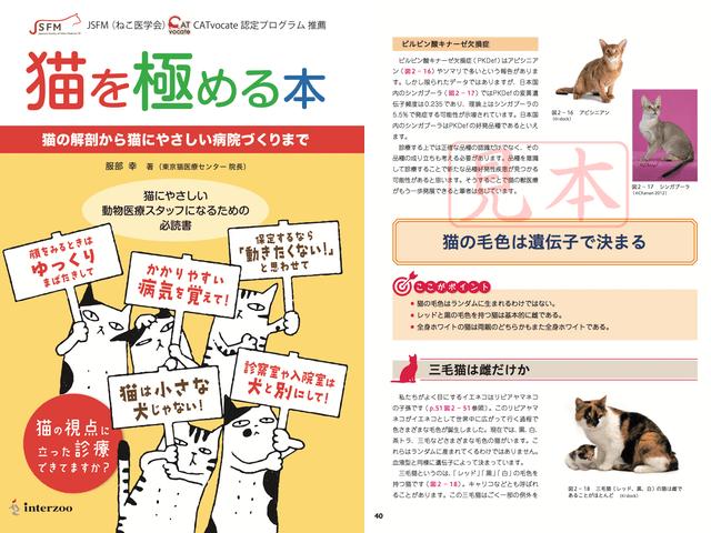 猫専門の獣医師が執筆、猫を徹底的に解説した専門籍「猫を極める本」