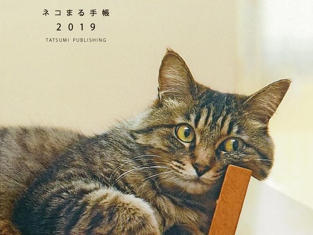 めくって貼って楽しい猫好きのための手帳「ネコまる手帳2019」