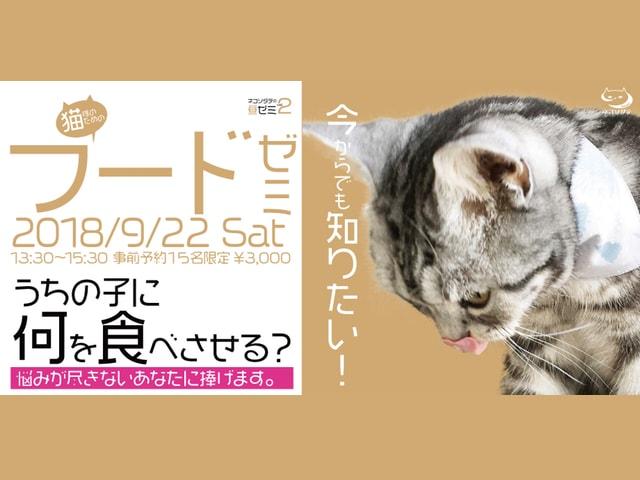 猫のフード選びに迷う飼い主さん向けのセミナー「猫様のためのフードゼミ」