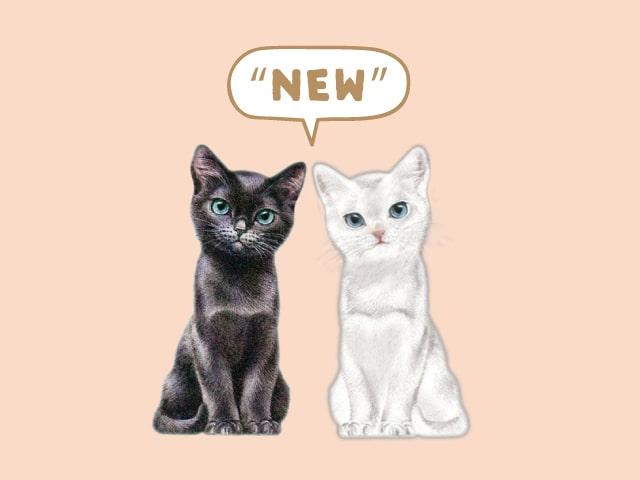PAUL & JOEから黒猫×白猫柄「チェスキャット」の新作アイテムが登場