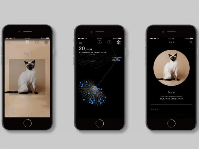 かざすだけで90種類の猫種を判別!AI図鑑アプリ「リンネレンズ」の最新版が公開