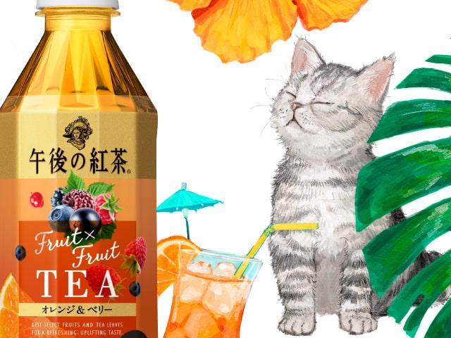 午後の紅茶で猫や犬などの癒やし動画を見られる「午後の癒しの動物園」キャンペーン開催中