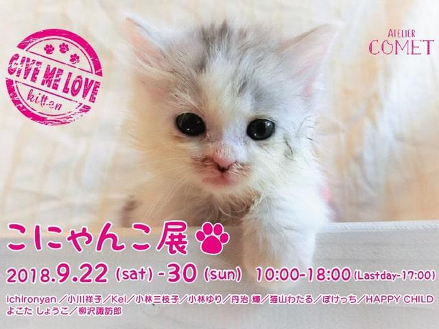 仔猫の写真や作品を展示販売する作品展「こにゃんこ展2」