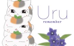 Uruの新曲「remember」アニメ盤のジャケットはトリプルニャンコ先生