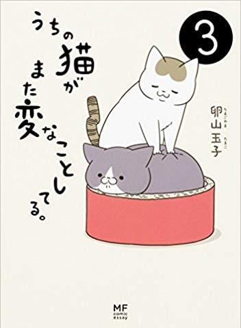 人気の猫マンガ「うちの猫がまた変なことしてる。」の単行本3巻