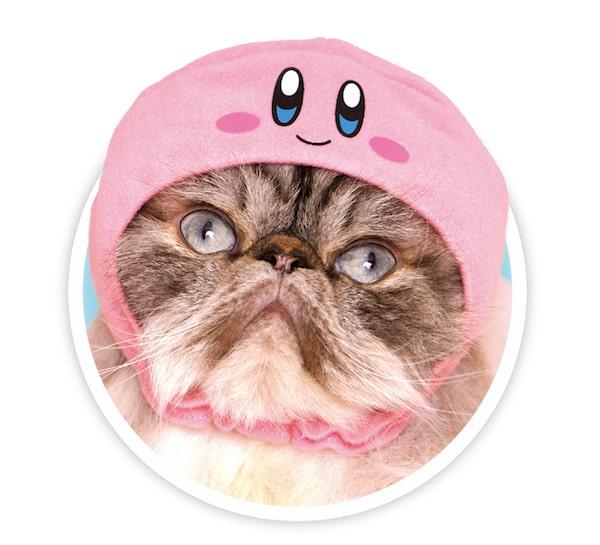 にっこりと笑ったカービィをモチーフにした猫用のかぶりもの