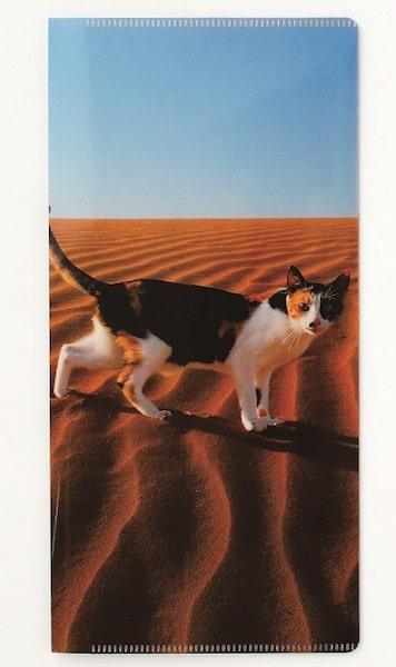 「岩合光昭の世界ネコ歩き2」のマルチホルダー