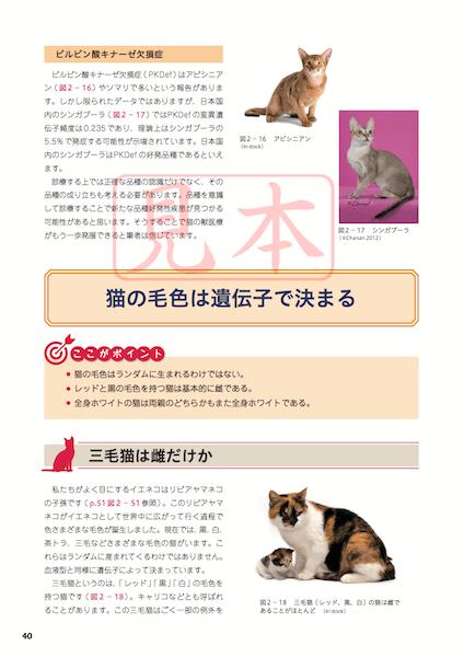 猫の毛色は遺伝子で決まる by 「猫を極める本 猫の解剖から猫にやさしい病院づくりまで」