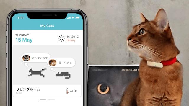 猫専用の首輪型ウェアラブルデバイス「Catlog(キャトログ)