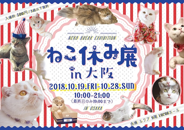 ねこ休み展 in 大阪のイベントイメージ
