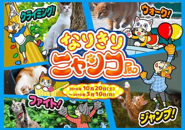 オービィ横浜の「なりきりニャンコ展」