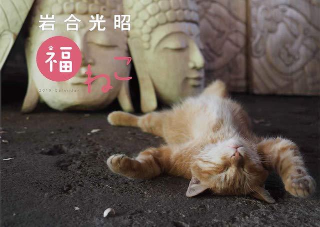 来年も岩合光昭さんのネコ写真で癒やされる「福ねこ2019 カレンダー」